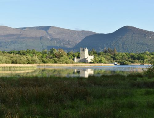 Fall in love with Killarney this summer!